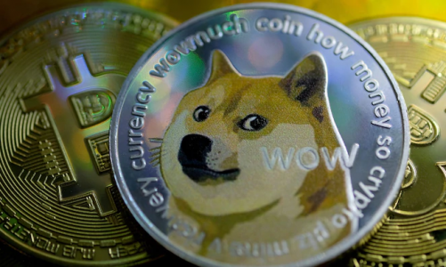 Valuables Dogecoin Stock To Get Better Experiences