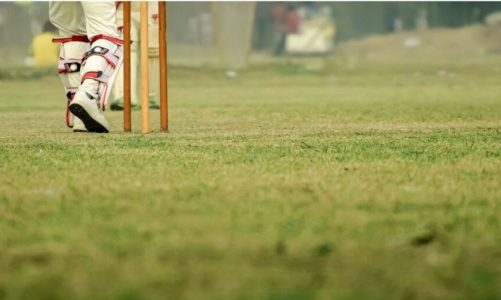Dream Cricket Tips And Tricks For Beginners